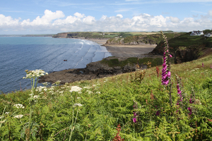 Little and Broad Haven beaches